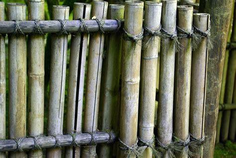 Japanese Bathroom Ideas Bamboo Fence Design Ideas A Creative Mom