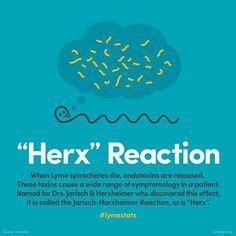 Herxheimer Reaction During Detox by Cd 57 What Is Lyme Disease The Best Detector In My