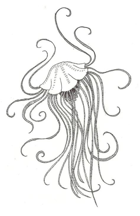 realistic jellyfish coloring pages fish art design microsoft windows photo gallery 6 0 6001
