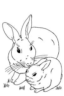cute baby bunny free coloring pages art coloring pages