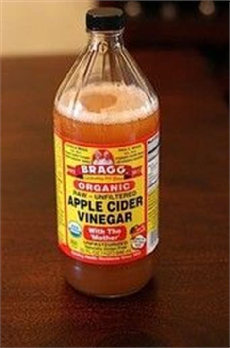 apple cider vinegar for dogs ears cleaning dogs ears on american cocker spaniel care tips and ear