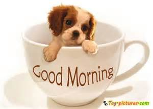 Cute little puppy with tea cup happy good morning imagefully com