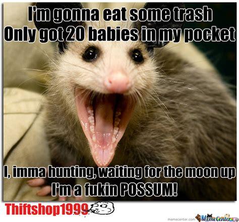 Possum Memes - thrift shop possum version by thriftshop1999 meme center