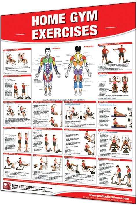 home gym workout plan productive fitness product categories fitness posters
