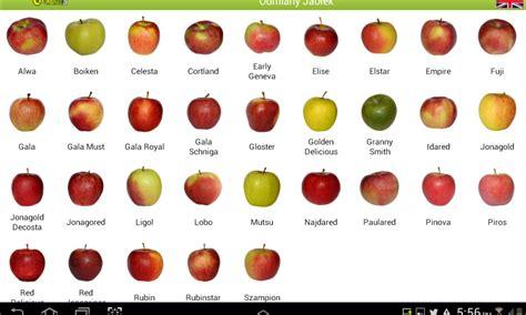apple varieties png resize 1000 2c600
