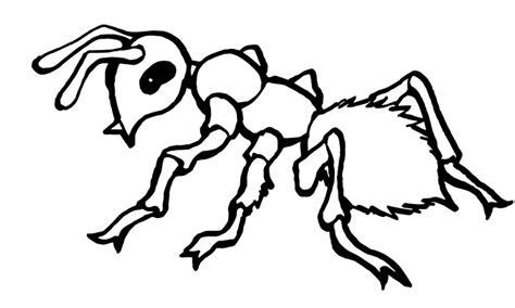 imagenes para colorear hormiga dibujos de hormigas para colorear y pintar
