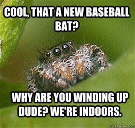Spider Meme Pictures To Pin - 1000 images about spider memes on pinterest popular