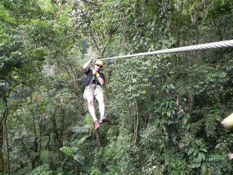 theme line zip all geared up picture of arenal view theme park la