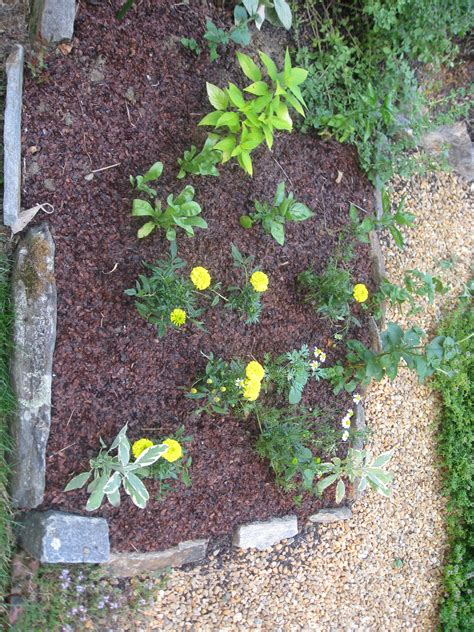 Garden Mulch by Mulch Matters Raspberry Delights And Wabbit Woes