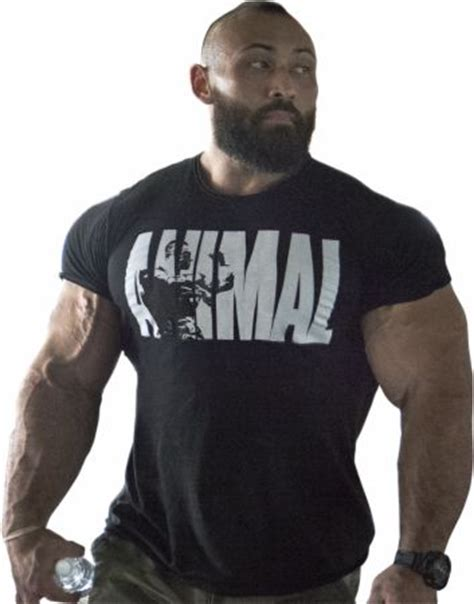 Top Nutrition Bars Animal Iconic T Shirt By Universal Nutrition At