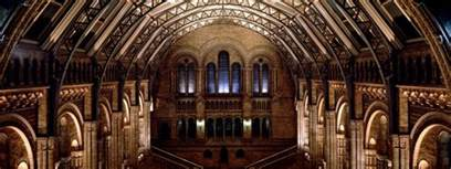 history and architecture natural history museum