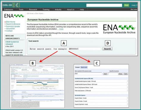 Lookup Text Free Number How To Search Ena With Text Embl Ebi