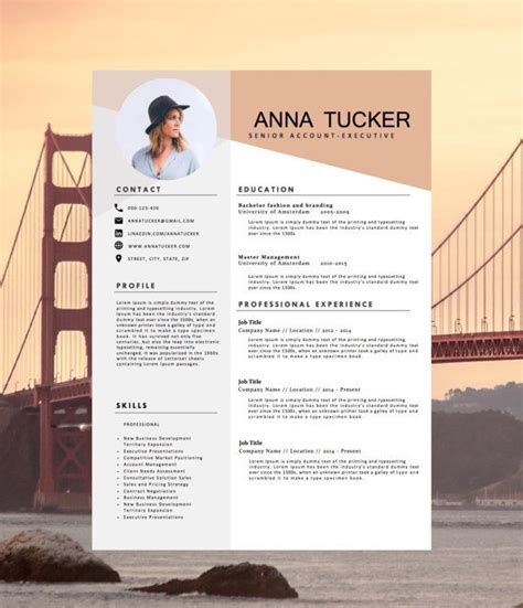design cv format word modern resume template cv template by hedgehogboulevard