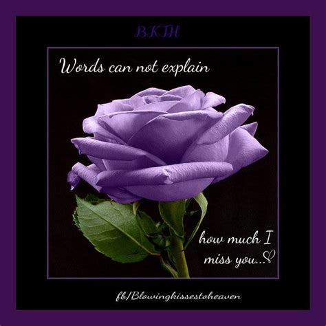 color purple quotes heaven last always flowers for my in heaven loss on my