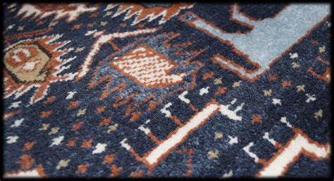 Different Types Of Rugs For Horses Different Types Of Rugs For Horses American Hwy