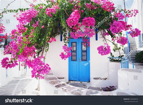 greek house music traditional greek house flowers paros island stock photo 336328574 shutterstock