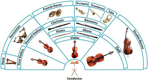What Are The Four Sections Of An Orchestra by Evolution Of The Orchestra Retrospective