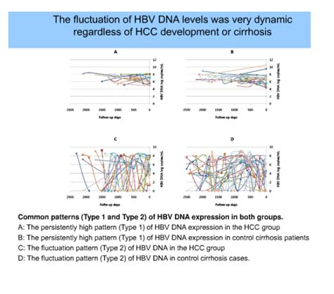 pattern theory llc pattern of serial hbv dna level and hcc development in