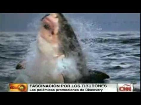 submarino el tiburn asesino tiburones asesinos doovi
