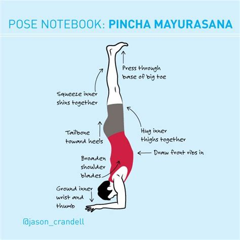 tutorial yoga vinyasa 94 best images about from our blog on pinterest yoga