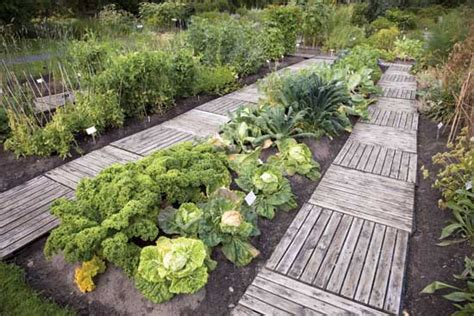 Landscape Bed Definition Intensive Gardening Grow More Food In Less Space With