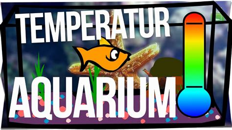 Temperatur Im Aquarium by Wassertemperatur Im Aquarium Wasser Garnelentv