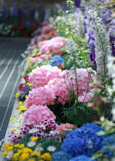 Beautiful Garden For My Flower Beds Pinterest Colorful Flower Gardens