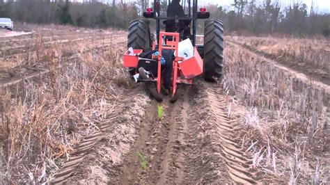 Tree Seedling Planter machine planting longleaf pine seedlings jan 7 2011