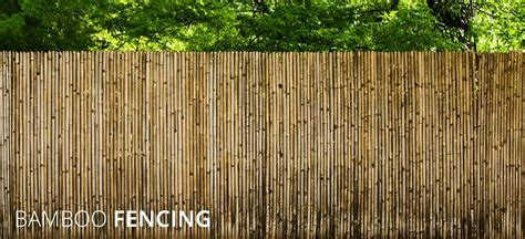 UK Bamboo supplies. Bamboo Poles, Bamboo Fencing, Bamboo