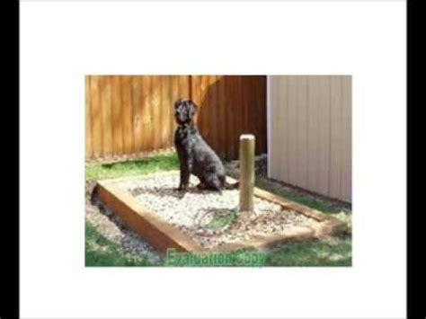 dog poop backyard snouthouse the solution to your dog poop problem youtube