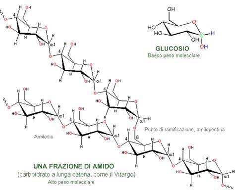 carboidrati negli alimenti alan baroncini consigli per tenersi in forma integratori
