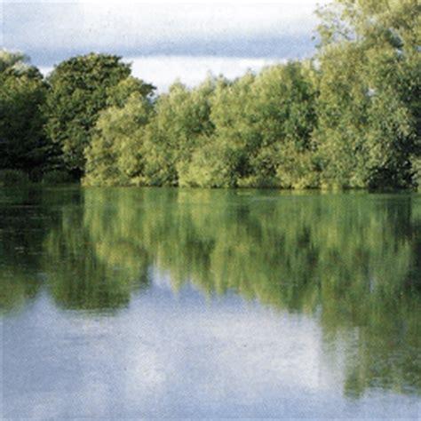 kleiner hängeschrank redmire pool ein kleiner see etwa 1 2 ha in