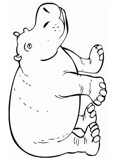 hippopotamus 27 animals printable coloring pages 27 best images about african safari on pinterest jungle