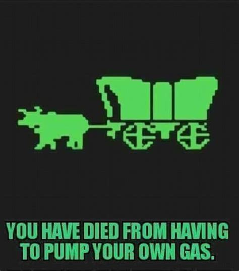 Oregon Trail Meme - memes make fun of oregonians that now have to pump own gas