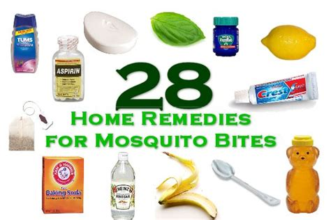 Home Remedy For Mosquitoes by Home Remedies For Mosquito Bites