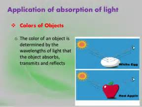 what are colored chemical compounds that absorb light scattering and absorption of light
