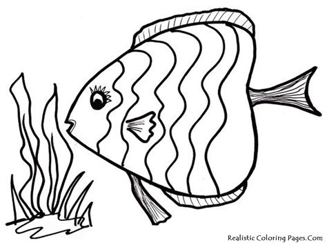 fish to color fish coloring pages realistic coloring pages