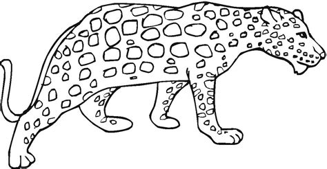 cartoon cheetah coloring pages coloring pages