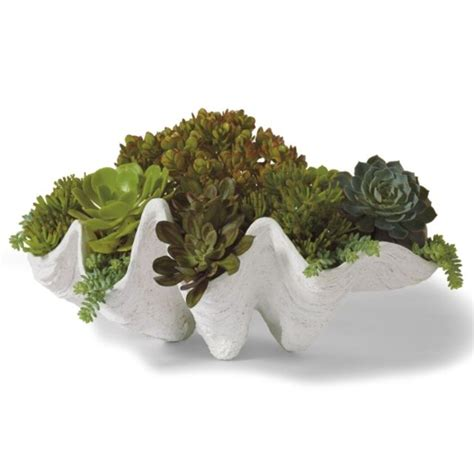 Seashell Planters by Seashell Outdoor Planter Grandin Road Home Decor Buy