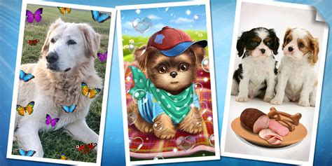 sweet puppies sweet puppies and dogs android apps on play