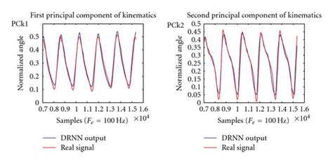 central pattern generator and walking from spinal central pattern generators to cortical network
