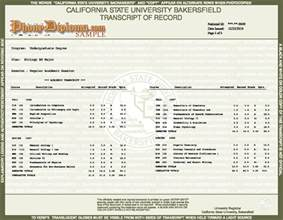 college transcript template answers transcript questions phonydiploma