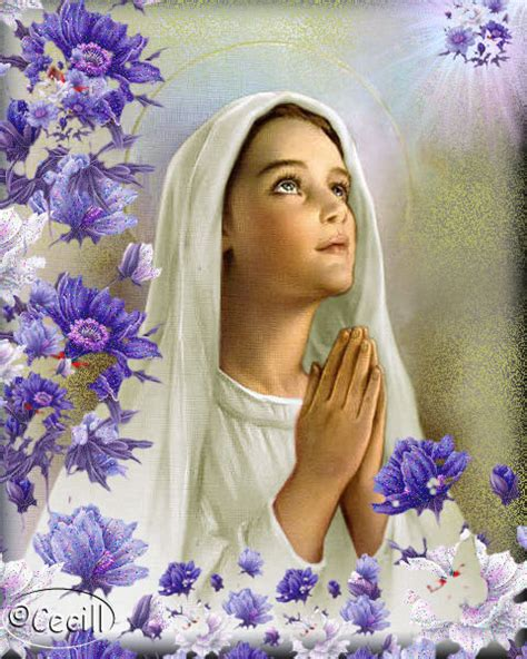imagenes de la virgen maria con texto 174 virgen mar 237 a ruega por nosotros 174 im 193 genes virgen