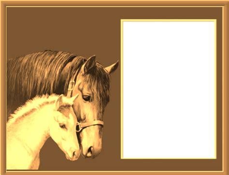 imagenes de feliz cumpleaños con caballos marcos para fotos con caballos fondos de pantalla y