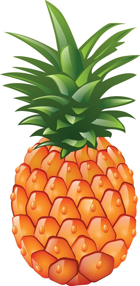 clipart pineapple pineapple png image free download cliparts