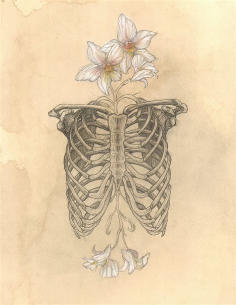 How To Save A Dying Plant by Illustration Art Hand Heart Skull Skeleton Anatomy Ribcage