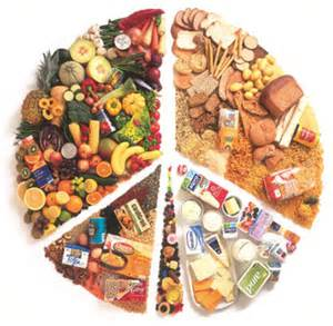 vegetarian society basic vegetarian nutrition