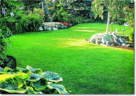 imagenes zonas verdes cuidando y protegiendo nuestro liceo cuidando las 193 reas