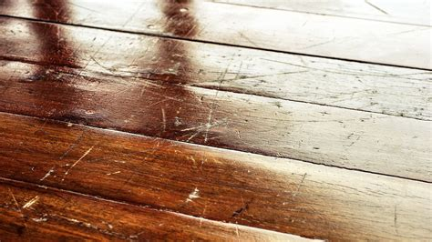 Floor Scratch Repair How To Remove Scratches From Hardwood Floors With A Walnut Pecoraro