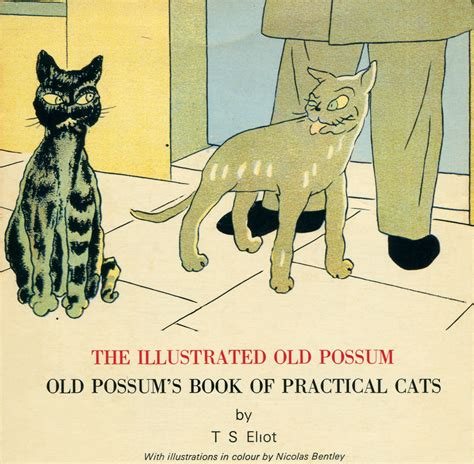 Possum S Book Of Practical Cats the illustrated possum by t s eliot